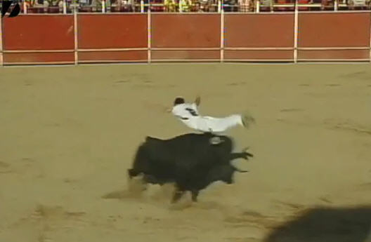 incredible bull jump